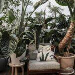 5 tuindecoratie ideeën met een klein budget