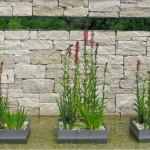 Tuin ontwerpen online: 5 beste tuinplanners