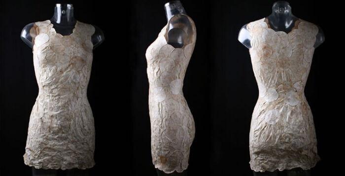 jurk van schimmel