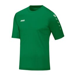 Team SS Shirt Senior