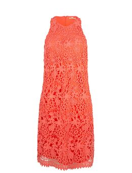 Jurk Lace Sleeveless coral maat: M / 38