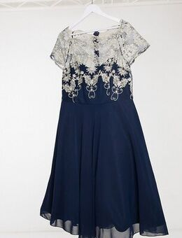 Contrast lace skater dress in navy