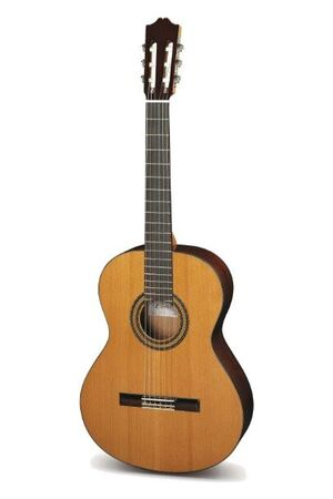30 klassieke gitaar