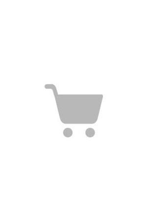 Striped Serie elektrische gitaar wit-zwart